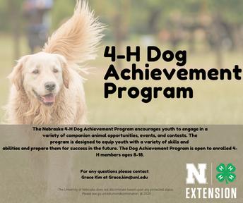 New 4-H Dog Achievement Program