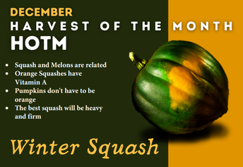 Winter Squash Facts