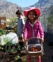 Join Us in the VV Community Garden!
