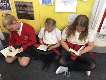 Year 5 Reading books kindly bought by Friends
