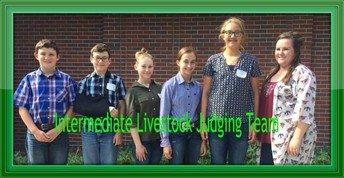 Summer Animal Science Contests