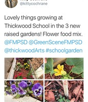Thickwood School