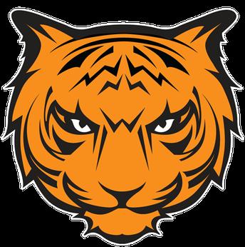 Waynesville Tigers Scoring (52)
