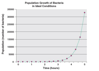 Conducting an Investigation (How do bacteria grow and respond to antibiotics?)