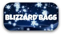 Blizzard Bags