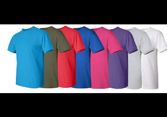 Solid colored tshirts or collared shirts only.