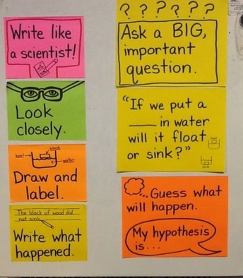 Am I teaching science or writing?