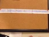 The Metric Ruler
