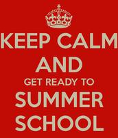 ARVA Summer School for High School Students