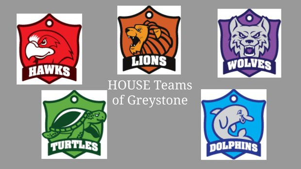 House Teams of Greystone: Hawks, Lions, Wolves, Turtles, Dolphins