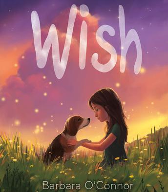 Wish by Barbara O'Conner