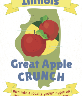 The Great Apple Crunch