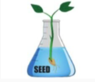 Science & Engineering Education Developmnent (SEED), Inc. Virtual Lessons on YouTube