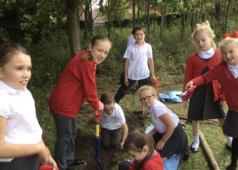 Planting Wildflower Seeds in Y5