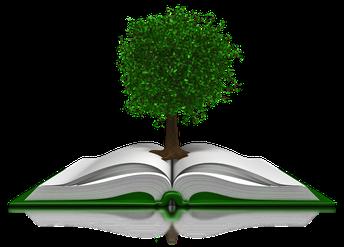 Ohio's Plan to Raise Literacy Achievement
