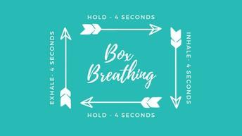 Breathing Box