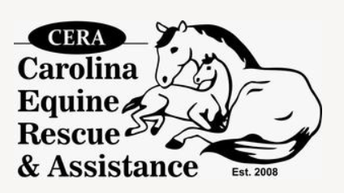 CCG COMMUNITY PARTNER PORTRAITS: Darlene Kindle & Carolina Equine Rescue & Assistance