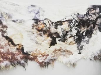 Zachtaardig - murals or raw fleece