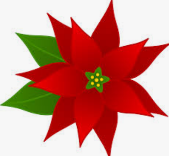 Poinsettia Orders due on November 6th