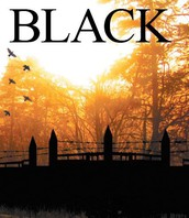 Black by Joan Vassar (Black Series Book 1)