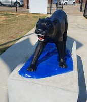 The Panther Gets a Fresh Look