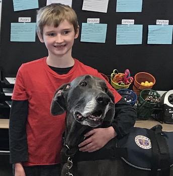 Canine Cuddles at Bean School