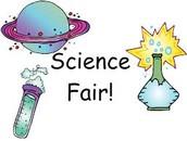 DHS Science Fair Winners