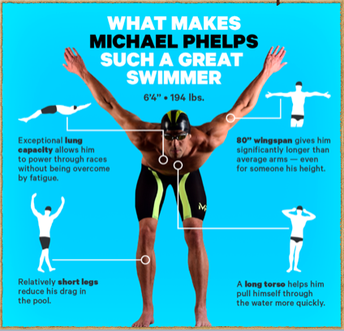 What Makes Michael Phelps Such A Great Swimmer