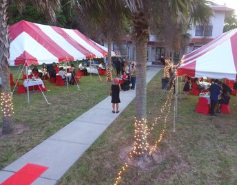 White twinkle lights wrap around the base of the palm trees that line the sidewalk