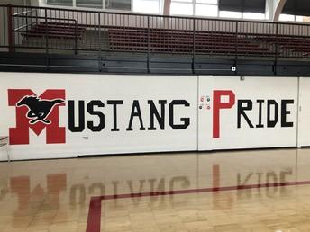 Mustang Pride Image