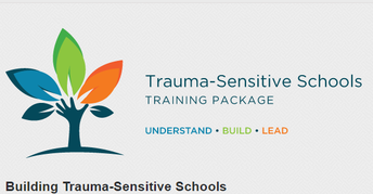 Trauma Sensitive School Training