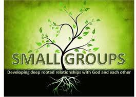 Everything Small Groups Newsletter