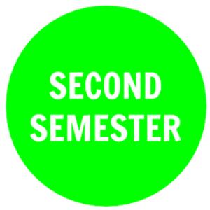 Second Semester Electives