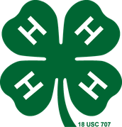 What is 4-H