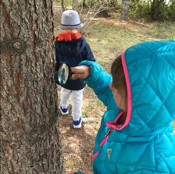 Pathways students exploring for bugs