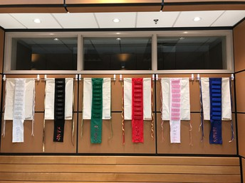 House Cup Team Banners