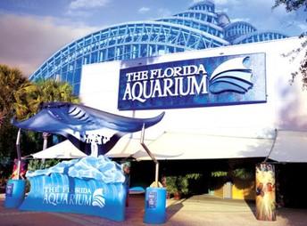 Pre-K, 1st & 4th Grade - Lowry Park Zoo & Florida Aquarium