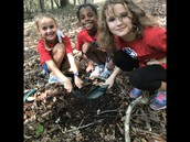 We had a blast digging for decomposers