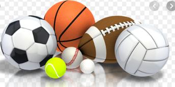 Ms Sports Program