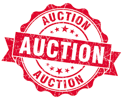Are You Ready For The Auction on Saturday, Feb. 24?