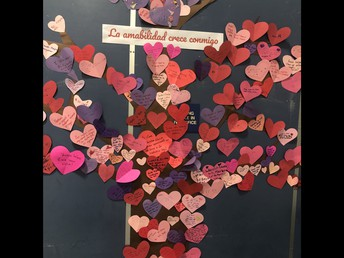 Kindness Tree with lots of Random Acts of Kindness!