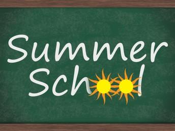 Summer School Options