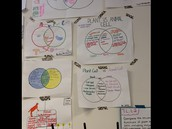 Student Anchor Charts:  Plant and Animals Cells