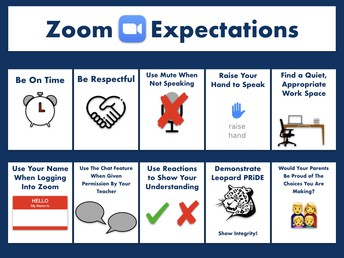 Zoom Expecations