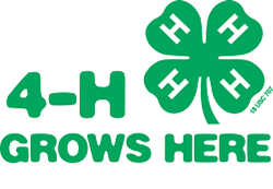 Enroll for Webster County 4-H Now!