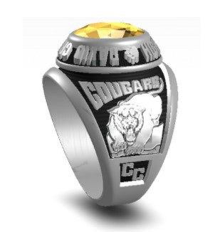 It's almost Class Ring time!!