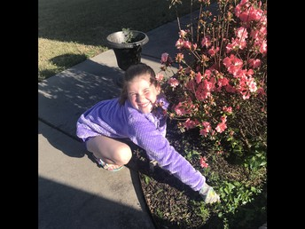 Macey is pulling weeds and that counts as exercise!