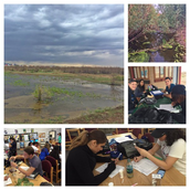 Experiential Project-Based Learning