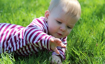 Infants plus Nature: The Perfect Equation for Joyful Learning