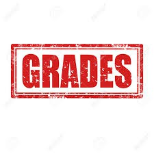 Student Grades & the Daily Plan in the OLS